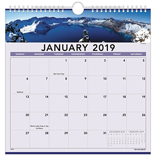AT-A-GLANCE 2019 Monthly Wall Calendar, 12