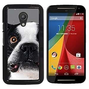Boston Terrier Goofy Dog Canine - Metal de aluminio y de plástico duro Caja del teléfono - Negro - Motorola Moto G2 II / Moto G (2nd gen) / Moto G (2014)