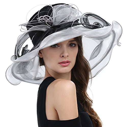 Janey&Rubbins Women's Elegant Kentucky Derby Hats Church Organza Dress Caps (Black)