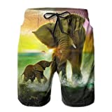 Ding Africa Elephant Baby Playing Men's Quick Dry Beach Pants Swimwear Board Shorts with Pocket