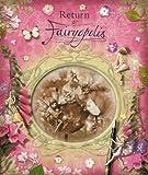Return to Fairyopolis (Flower Fairies Journal) by Justine Swain-Smith (2009-02-26)