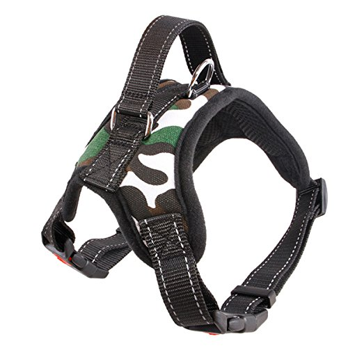Harness Adjustable No Pull Training Large Above
