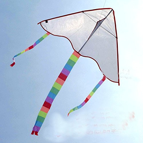 White Kite Painting 5pcs/lot With Line Ripstop Nylon And Reasonable Price ,with Control Bar Weifang Factory - Sunglasses Lesson Cheap