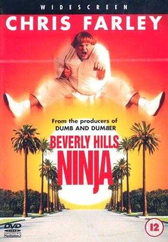 Beverly Hills Ninja [Reino Unido] [DVD]: Amazon.es: Chris ...