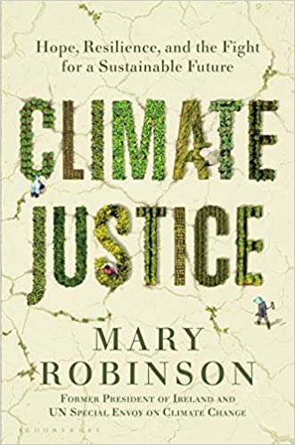 Image result for climate justice mary robinson
