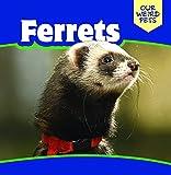 Ferrets (Our Weird Pets)