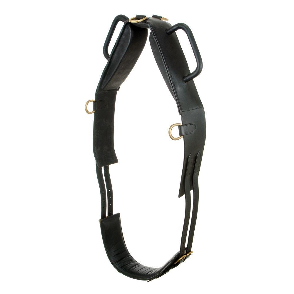 1st Choice Performers Vaulting Surcingle – ブラック – Horse   B003M6HR28