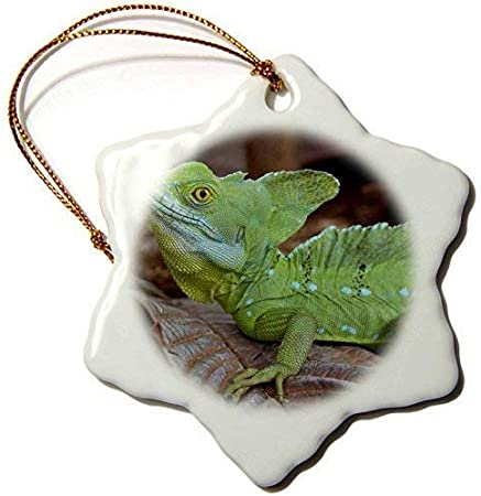 Quality Christmas Cards /& Packs Reptiles Santa Chameleon Decorating the Tree