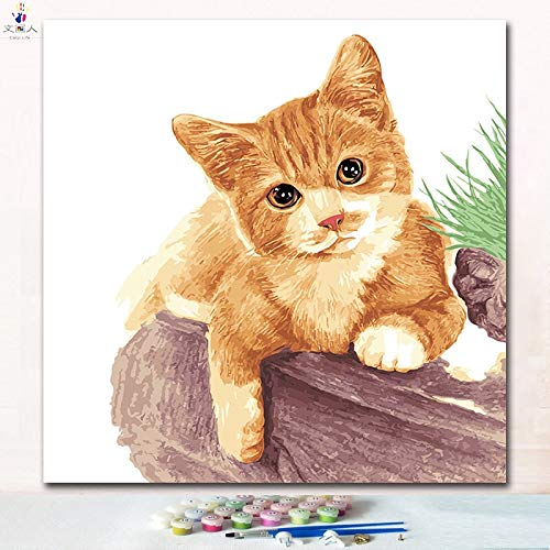 40x40 with frame 7145 cat10 KYKDY Cut Animal Doctor Cat Digital Oil Painting coloring Numbers Pictures by Numbers on Canvas with Paint colors for Kids prac,7265 cat13,50x50 no Frame