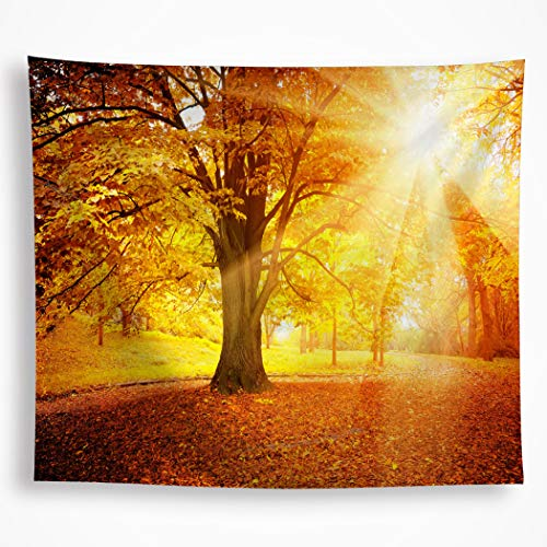VAKADO Autumn Fall Forest Trees Tapestry Wall Hanging Golden Sunshine Sunset Scenery Nature Plant Leaves Art Decor Blanket for Bedroom Room Dorm ()