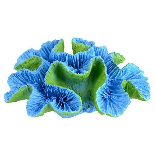 Underwater Treasures 65297 Open Brain Coral (Painted Open Salt)