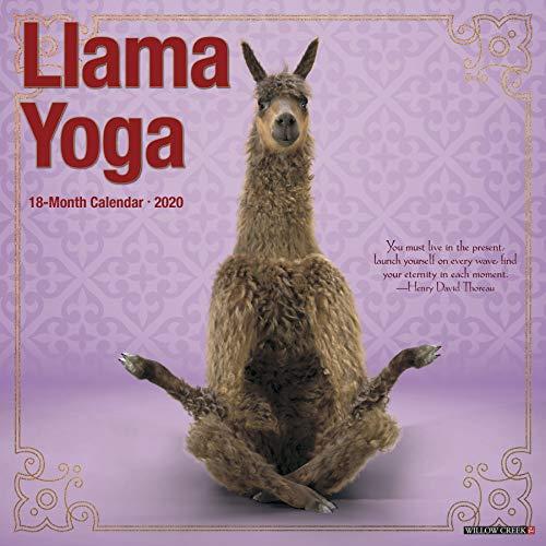 Llama Yoga 2020 Wall Calendar