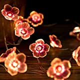 Yaoqiaoji 10ft Baby Shower Decorations, El Wire, Spring Flower, Pinky Sakura Copper Wire LED String Lights Warm White 30leds for Parties, DIY Events, Bedroom, Indoor, Outdoor Cover Decoration