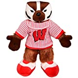 NCAA Wisconsin Badgers Bucky Badger Mascot Plush, One Size, Red