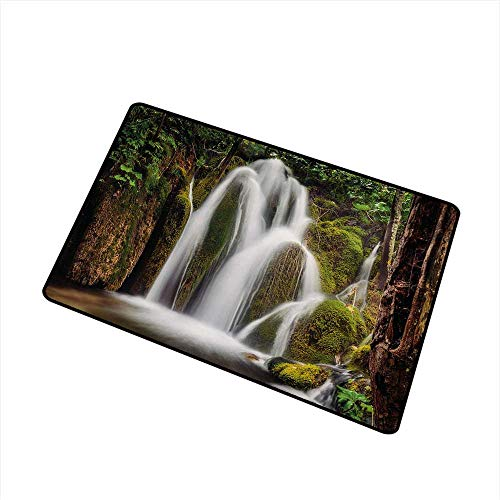 Becky W Carr Waterfall Welcome Door mat Epic Waterfall Down The Cliffs Deep in Forest Natural Wonders Cascade Picture Door mat is odorless and Durable W29.5 x L39.4 Inch,White Green