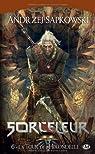Sorceleur, Tome 6 : la Tour de l'Hirondelle par Sapkowski