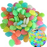 YOOPET Glow in The Dark Pebbles, 200pcs Colorful Outdoor Glow Rocks Stones for Plants, Walkways, Path, Fish Tank Aquarium DIY Decorations (Mixed Color)