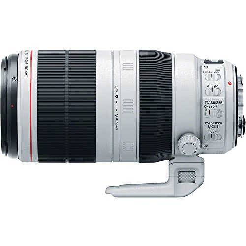 Canon EF 100-400mm f/4.5-5.6 L is II USM Telephoto Zoom Lens with 2X Teleconverter + 3 UV/CPL/ND8 Filters + Kit for EOS & Rebel DSLR Cameras by Canon (Image #2)