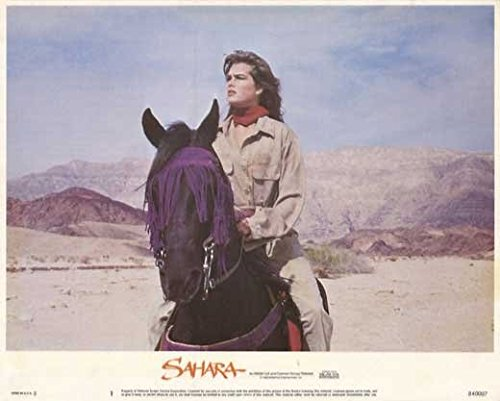 Sahara POSTER Movie (1984) Style A 11 x 14 Inches - 28cm x 36cm (Brooke Shields)(Lambert Wilson)(Horst Buchholz)(John Rhys-Davies)(Ronald Lacey)(John Mills)(Steve Forrest) (Sahara Shields Brooke With)