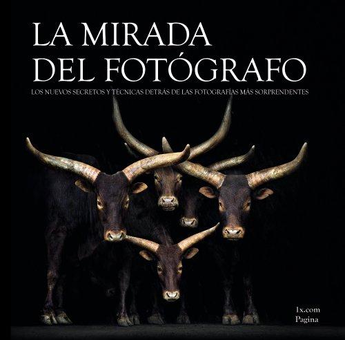 La Mirada Del Fotógrafo / The Photographer's Eye (Spanish Edition)