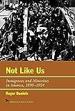 Not Like Us: Immigrants and Minorities in America 1890-1924 (The American Ways Series)