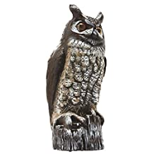 Dalen Products OW6 Gardeneer 16-Inch Molded Owl