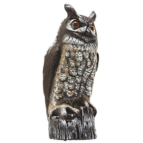 Statue Natural (Gardeneer By Dalen Natural Enemy Scarecrow Great Horned)
