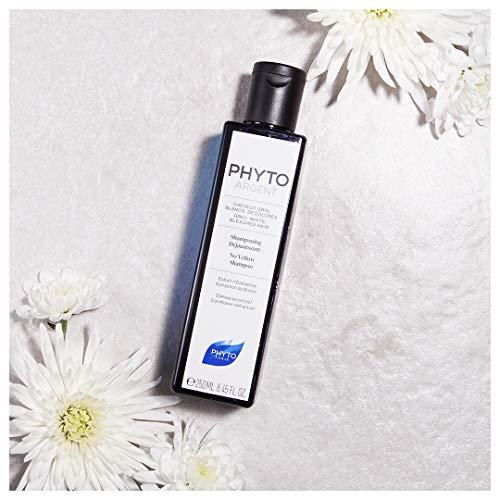 PHYTO Phytoargent No Yellow Shampoo, 8.44 fl oz