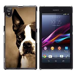 VORTEX ACCESSORY Hard Protective Case Skin Cover - Boston bull terrier bulldog French puppy - Sony Xperia Z1 L39 C6902 C6903 C6906 C6916 C6943