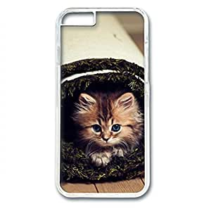 Kittens Cute Face Whiskers PC Transparent Skin Hard Case Cover Design for iPhone 6 (4.7 inch)