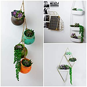 12 Fake Succulent Plants Realistic- Artificial Succulent Plants- Large Faux Succulents Unpotted- Hanging Floral Succulent Cuttings Arrangement- Outdoor And Indoor- Wall Decor -Easy DIY With Stems 6