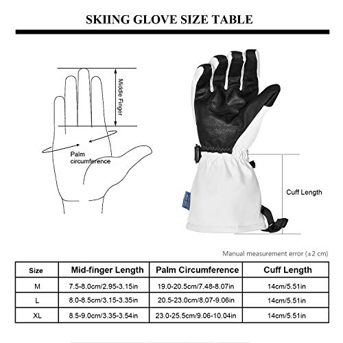 Botack Ski Snow Gloves Mens Waterproof Touchscreen Winter Leather Gloves for Snowboarding Skiing