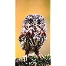 TF PUBLISHING 2017-2018 Backyard Birds 2 Year Pocket Calendar