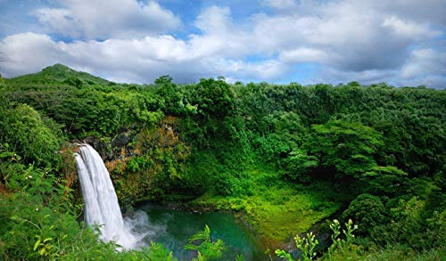 Hawaii - Waterfalls - Photography A-91918 (16x24 Giclee Gallery Print, Wall Decor Travel Poster)