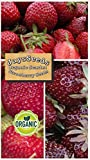 buy Organic Scarlet Strawberry 315 Seeds Upc 600188190830 + 1 Free Plant Marker now, new 2019-2018 bestseller, review and Photo, best price $5.04