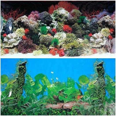 24l-x-20h-double-sided-aquarium-terrarium-black-background-decorations