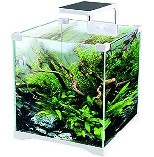 Kit Acuario 16 litros con Filtro + Pantalla LED ¡Envío 24H!