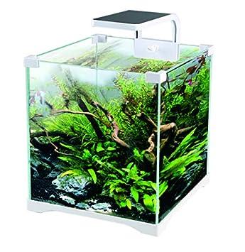 Kit Acuario 16 litros con Filtro + Pantalla LED ¡Envío 24H!: Amazon.es: Productos para mascotas
