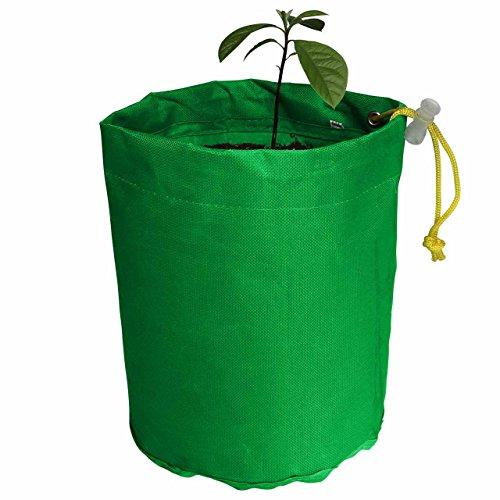 avoseedo-grow-your-own-avocado-tree-grow-bag-1-gallon-fabric-pots-green