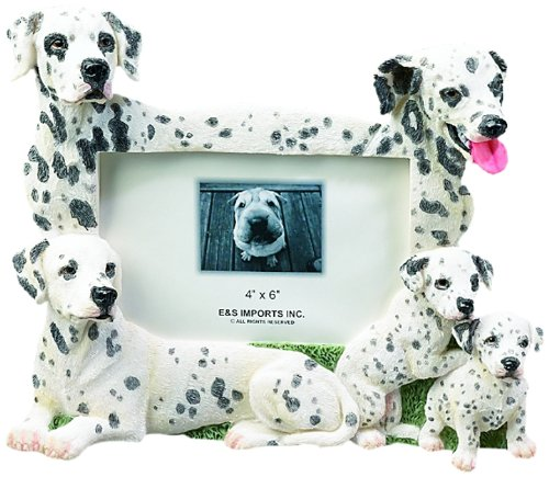 Dalmatian Gift Picture Frame Holds Your Favorite 4 x6 Inch Photo,  A Hand Painted Realistic Looking Dalmatian Family Surrounding  Your Photo. This Beautifully Crafted Frame is A Unique Accent To Any Home or Office. The Dalmatian Picture Frame Is The Perfect Gift For Dalmatian Owners And Lovers!