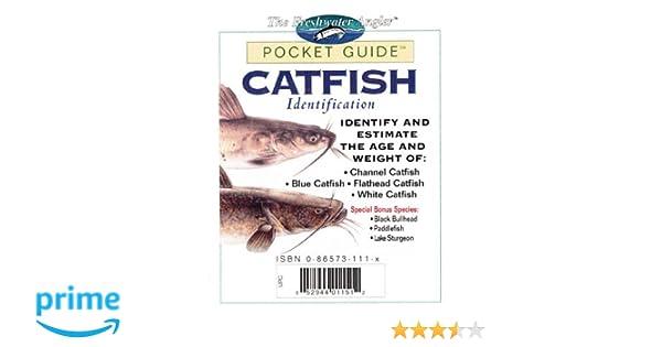 Catfish Identification Pocket Guide Freshwater Angler Creative