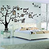 2016 NEW Extra Large 180*250CM/79*99 Black /250*180CM Brown 3D DIY Photo Tree Wall Decals Family Wall Stickers Mural Art Home Decor