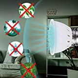 FEDBNET 110V/220V UV Germicidal Lamp, E27 /E14