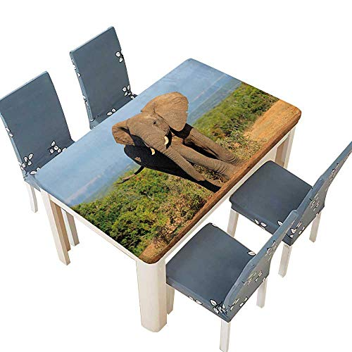 PINAFORE Indoor/Outdoor Polyester Tablecloth Large African Elephant Bull (Loxodonta africana),Addo Elephant National Park,South Africa Washable for Tablecloth W25.5 x L65 INCH (Elastic -
