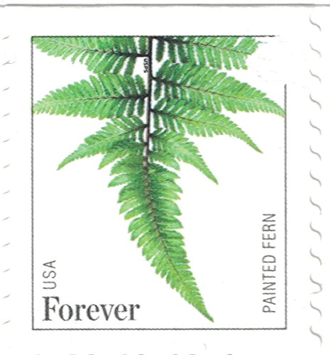 USPS Strips of 10 Ferns Forever Postage Stamps Featuring a Close up Photograph of Five Different Species of Fern (10 Strips of 10 Stamps) ()