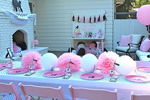 Minnie Mouse decoración de fiesta de Minnie Mouse primera ...
