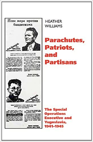 Patriots And Partisans Ebook