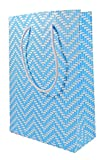 Paper to Bag Chevron Party Favour Bags (Pack of 20) (Large, Pastel Blue)
