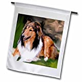 3dRose Dogs Rough Collie – Rough Collie – 18 x 27 inch Garden Flag (fl_4155_2) Review