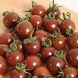 POMODORO CILIEGINO NERO 30 SEMI Pomodorino Dolce Alta Resa Black Cherry Tomato